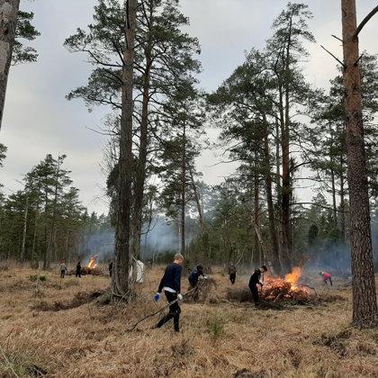 05.12.2019. Igaunijas rūgtlapes glābšanas misija